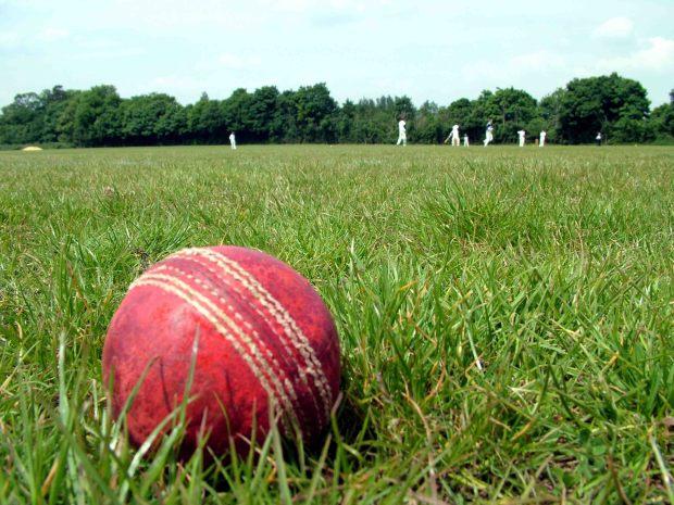 Cricket ball & field