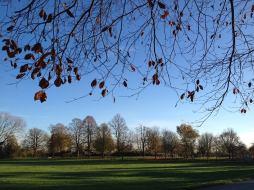 Cutteslowe Park 1