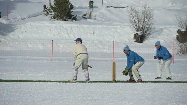 winter-cricket